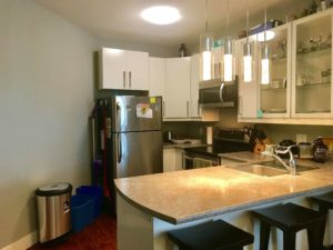 One bed One bath legal Blk Mtn suite $1000