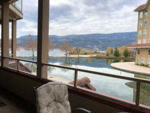 Downtown Lake View 3 Bedroom 2 Bathroom $2300